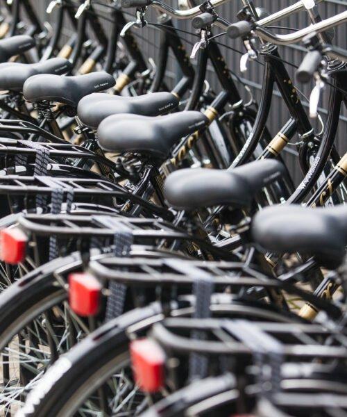 Przewóz do pracy w Holandii i Belgii | PrismaWorx